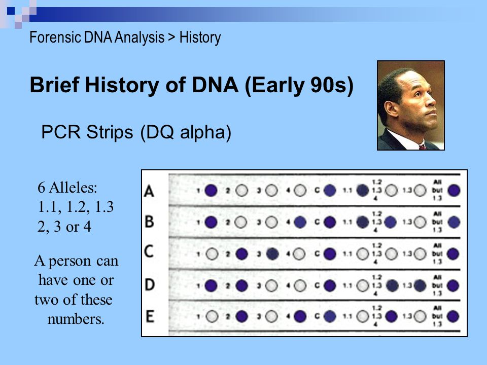 Brief History of DNA (Early 90s)