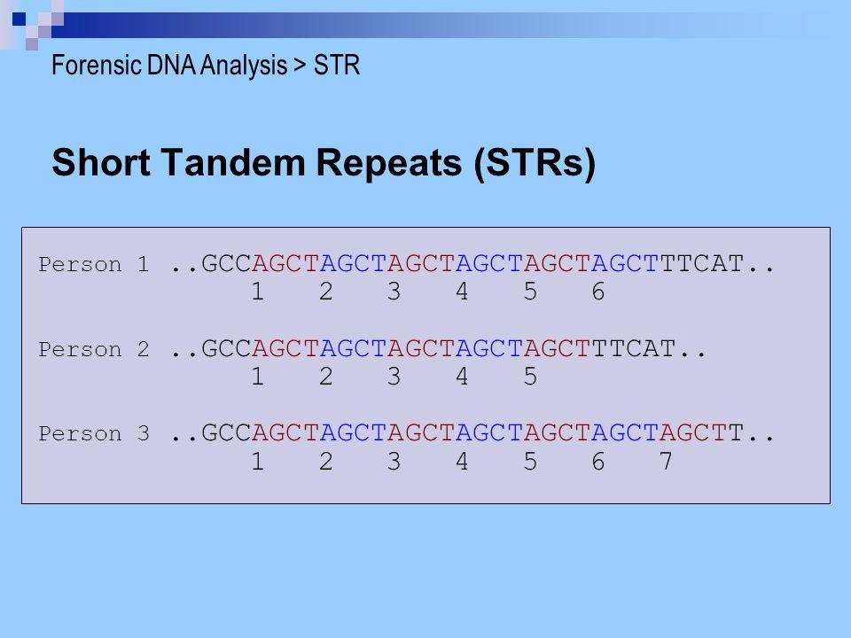 Short Tandem Repeats (STRs)