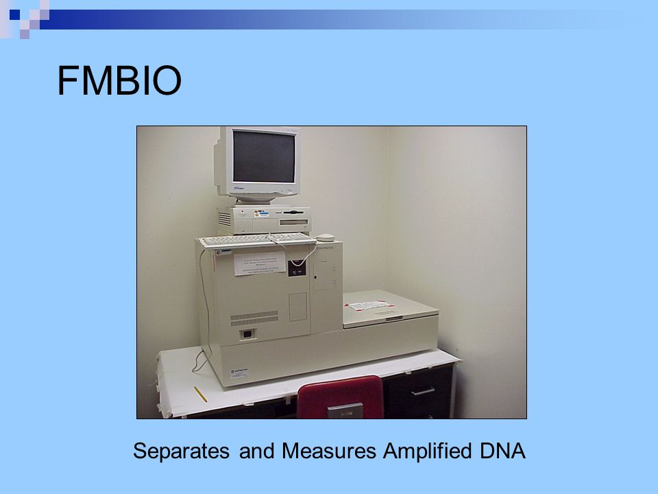 FMBIO Separates and Measures Amplified DNA