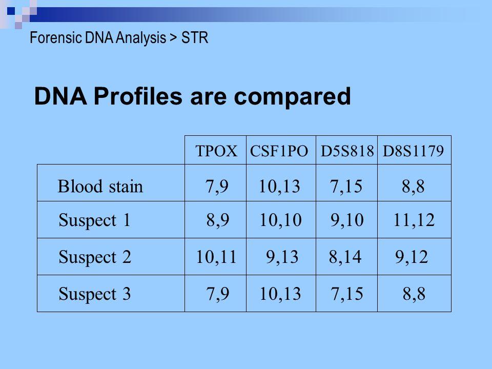 DNA Profiles are compared