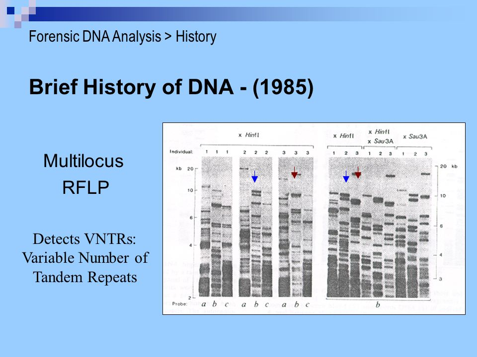 Brief History of DNA - (1985)