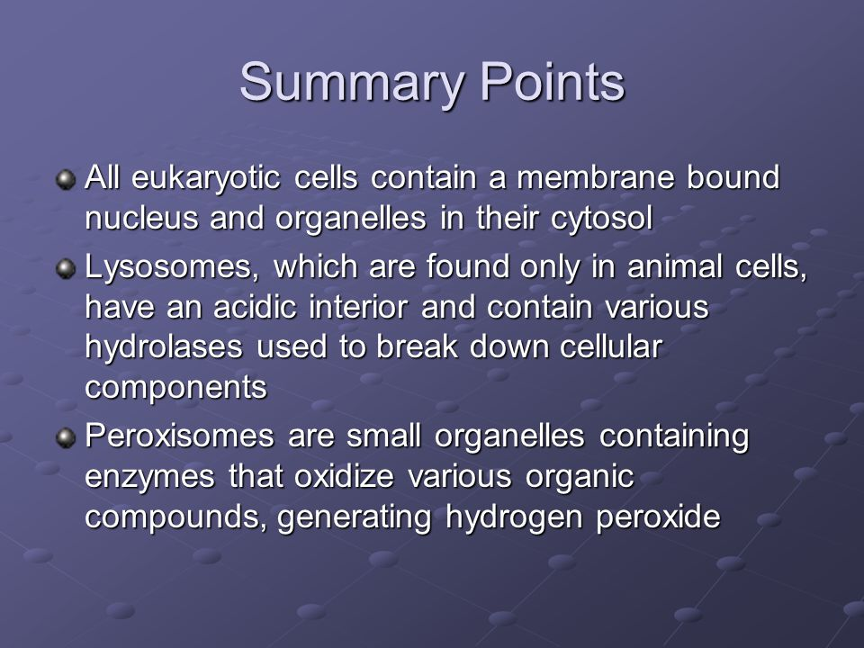 Summary Points All eukaryotic cells contain a membrane bound nucleus and organelles in their cytosol.