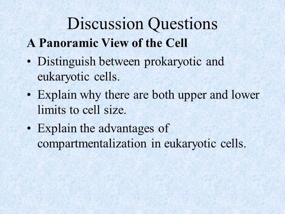 Discussion Questions A Panoramic View of the Cell