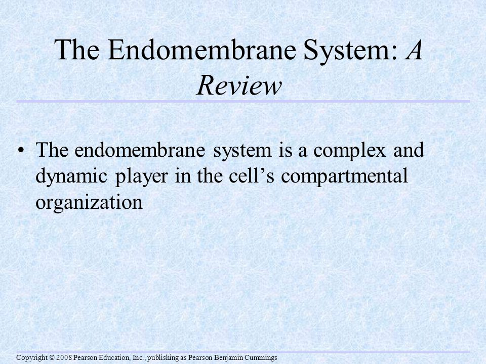 The Endomembrane System: A Review