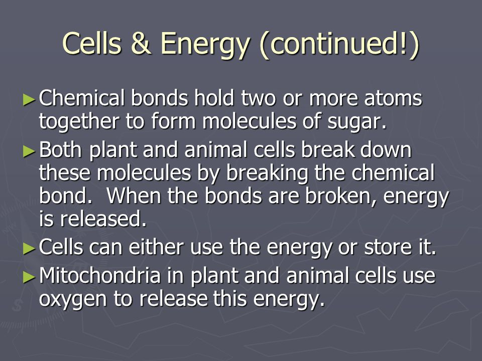 Cells & Energy (continued!)