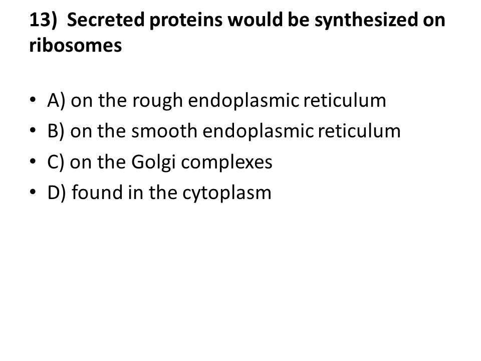 13) Secreted proteins would be synthesized on ribosomes