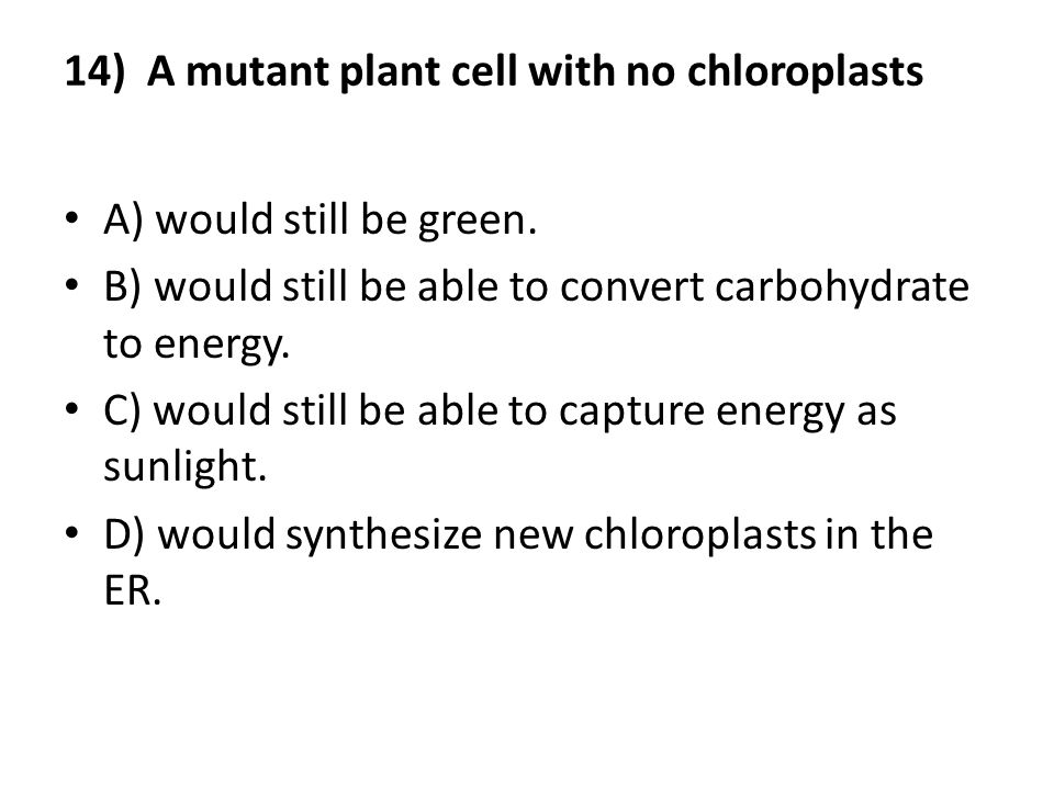 14) A mutant plant cell with no chloroplasts