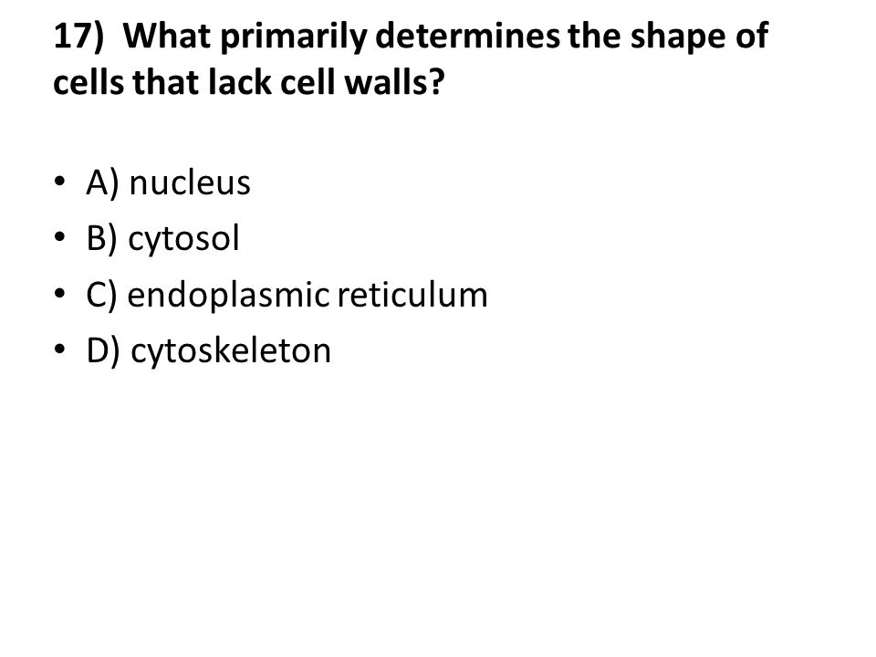17) What primarily determines the shape of cells that lack cell walls