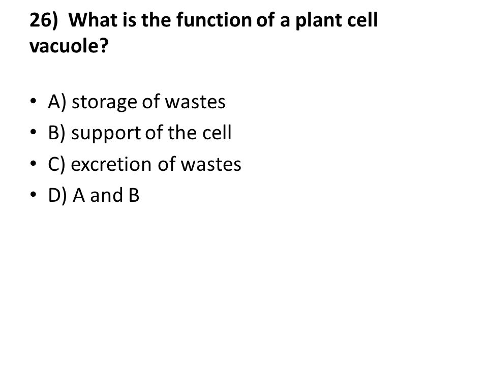 26) What is the function of a plant cell vacuole