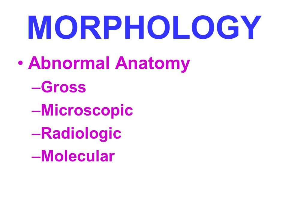 MORPHOLOGY Abnormal Anatomy Gross Microscopic Radiologic Molecular