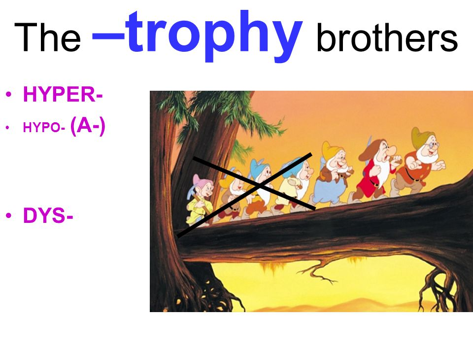 The –trophy brothers HYPER- DYS- HYPO- (A-)