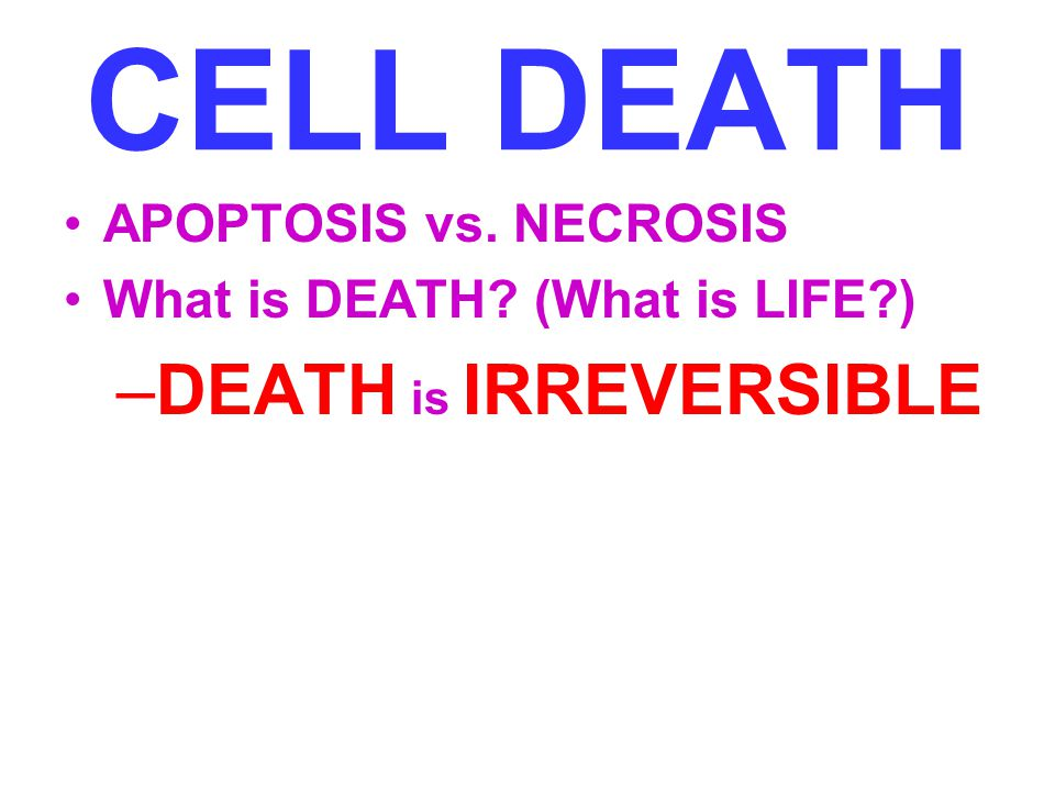 CELL DEATH DEATH is IRREVERSIBLE APOPTOSIS vs. NECROSIS