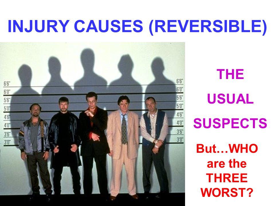 INJURY CAUSES (REVERSIBLE)