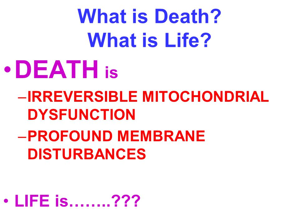 What is Death What is Life