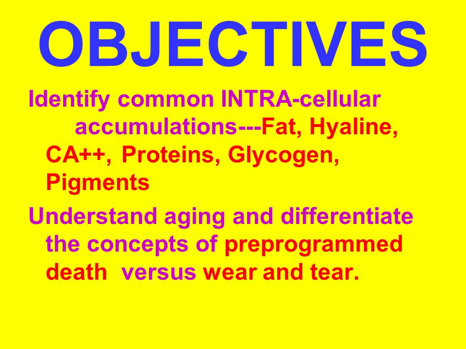 OBJECTIVES Identify common INTRA-cellular accumulations---Fat, Hyaline, CA++, Proteins, Glycogen, Pigments.