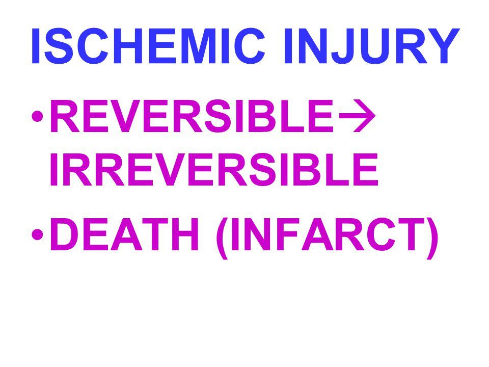 ISCHEMIC INJURY REVERSIBLE IRREVERSIBLE DEATH (INFARCT)