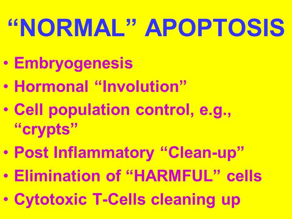 NORMAL APOPTOSIS Embryogenesis Hormonal Involution