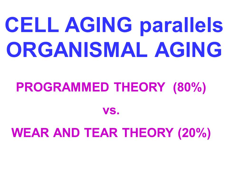 CELL AGING parallels ORGANISMAL AGING