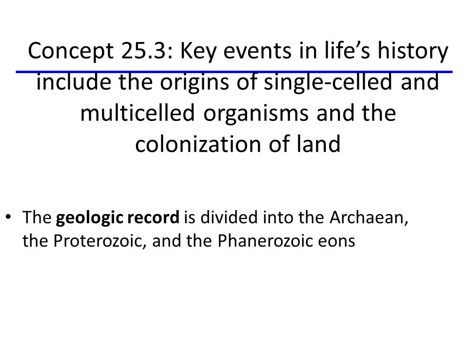 Concept 25.3: Key events in life's history include the origins of single-celled and multicelled organisms and the colonization of land