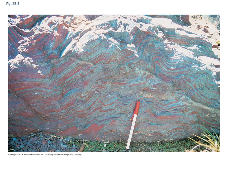 Fig. 25-8 Figure 25.8 Banded iron formations: evidence of oxygenic photosynthesis.