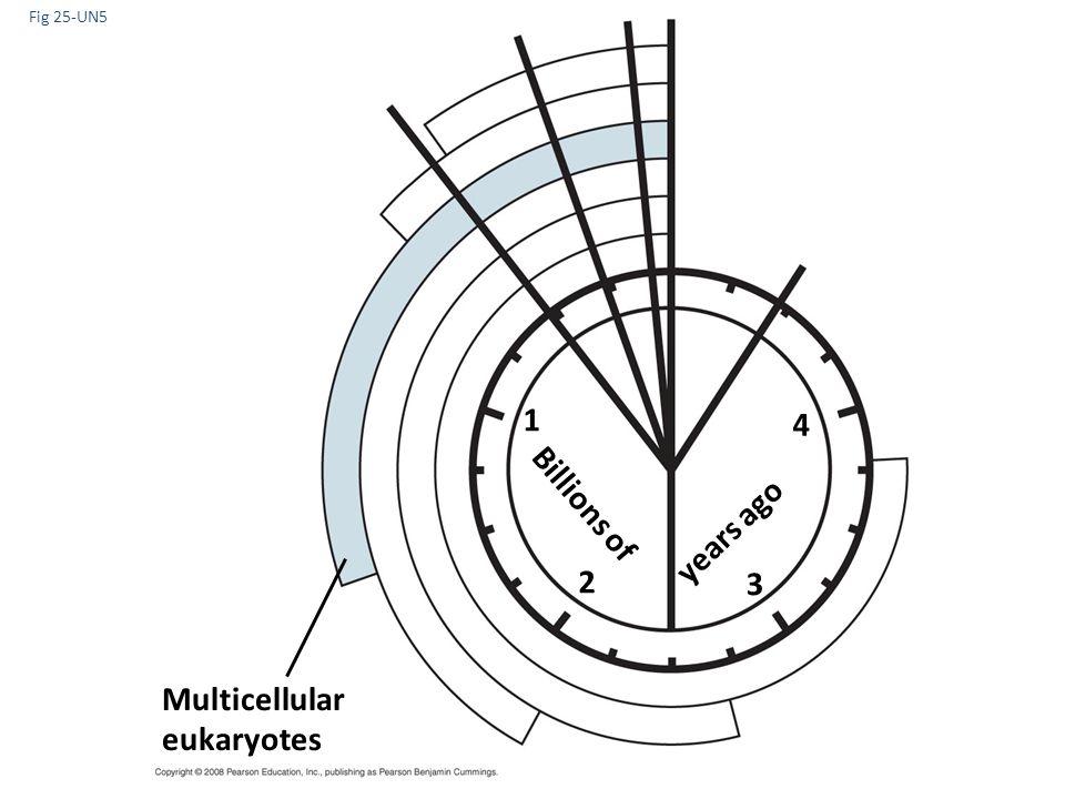 Fig 25-UN5 1 4 Billions of years ago 2 3 Multicellular eukaryotes
