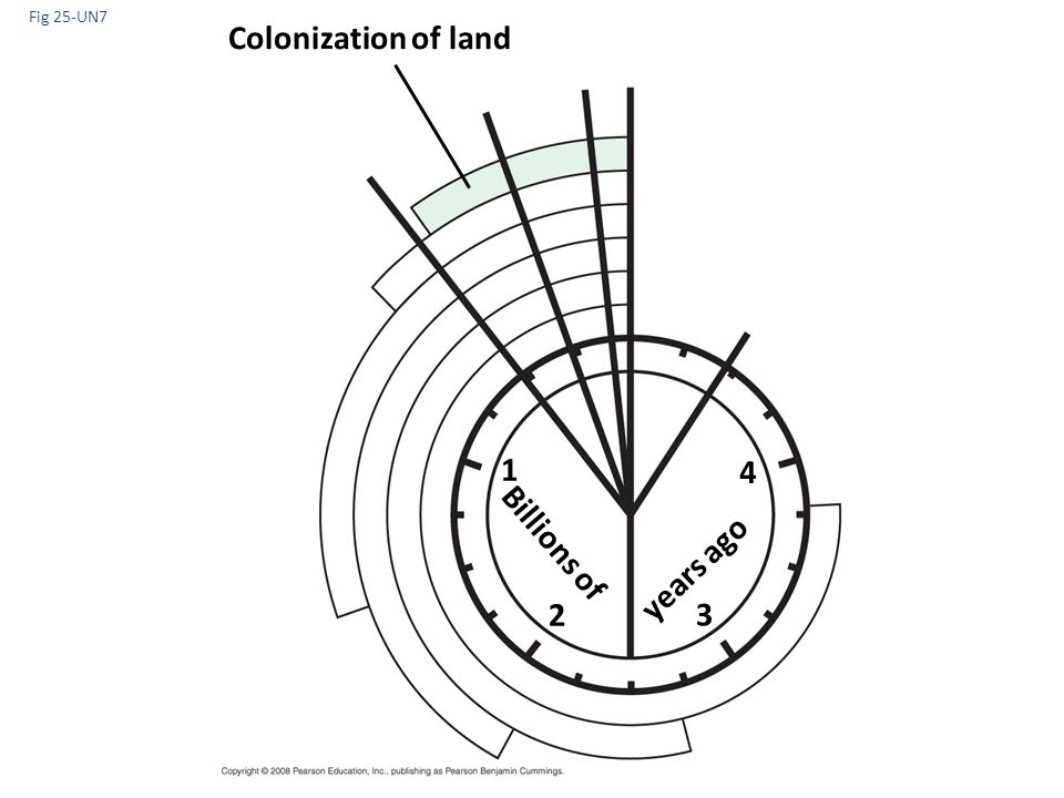 Fig 25-UN7 Colonization of land 1 4 Billions of years ago 2 3