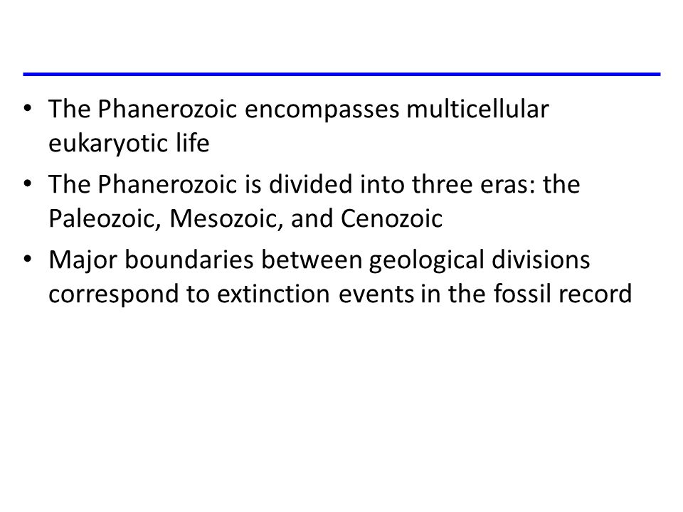 The Phanerozoic encompasses multicellular eukaryotic life