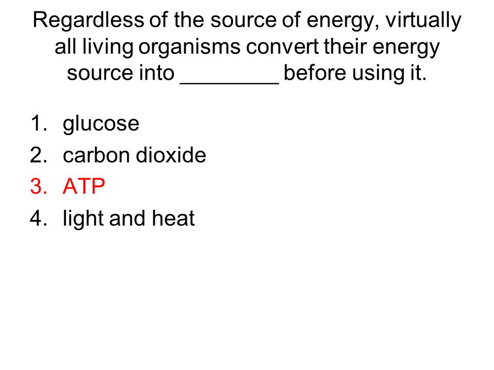 Regardless of the source of energy, virtually all living organisms convert their energy source into ________ before using it.