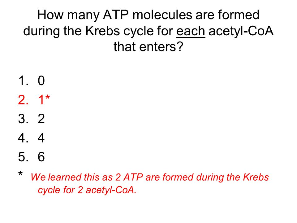 How many ATP molecules are formed during the Krebs cycle for each acetyl-CoA that enters