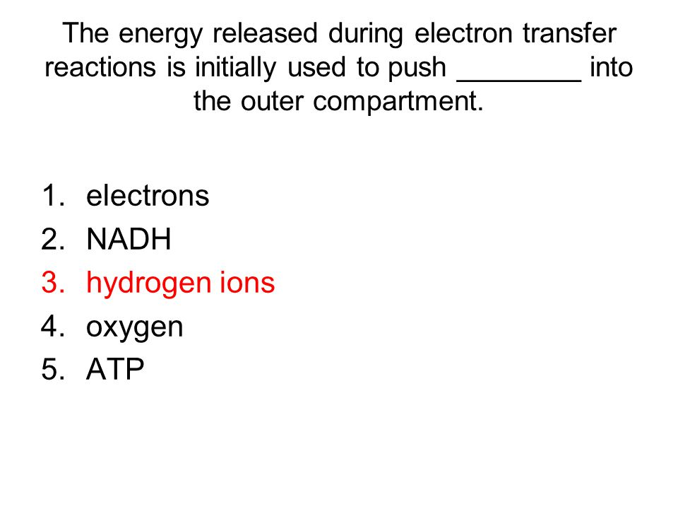 electrons NADH hydrogen ions oxygen ATP