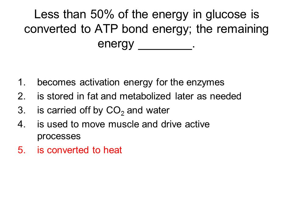 Less than 50% of the energy in glucose is converted to ATP bond energy; the remaining energy ________.