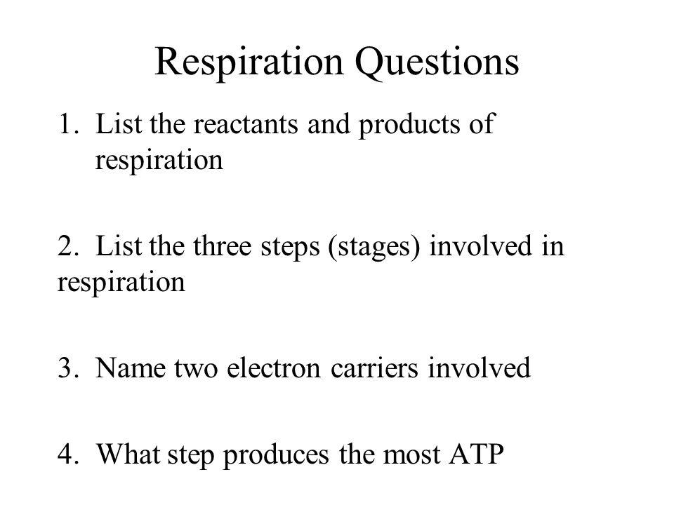 Respiration Questions