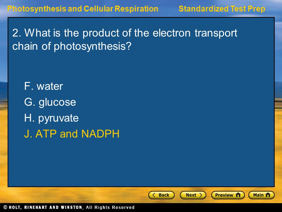 2. What is the product of the electron transport chain of photosynthesis