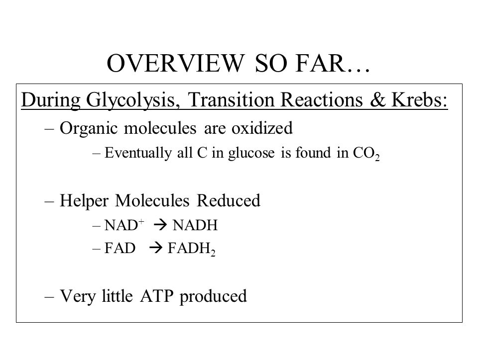 OVERVIEW SO FAR… During Glycolysis, Transition Reactions & Krebs:
