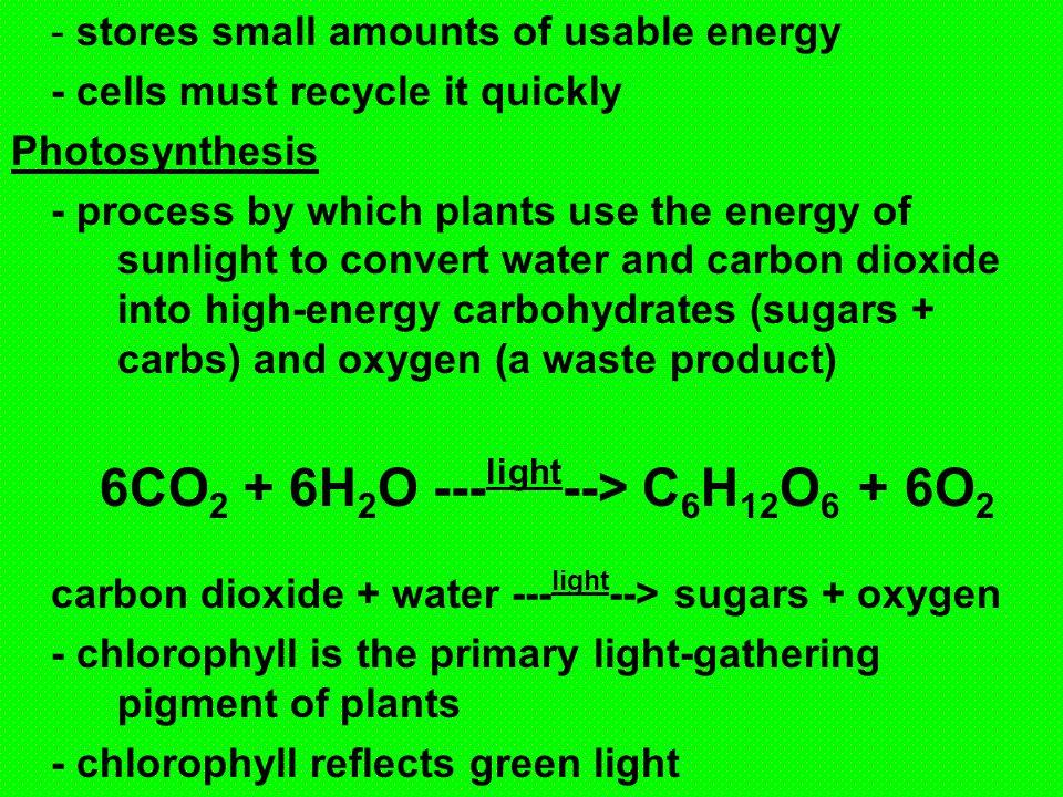 6CO2 + 6H2O ---light--> C6H12O6 + 6O2