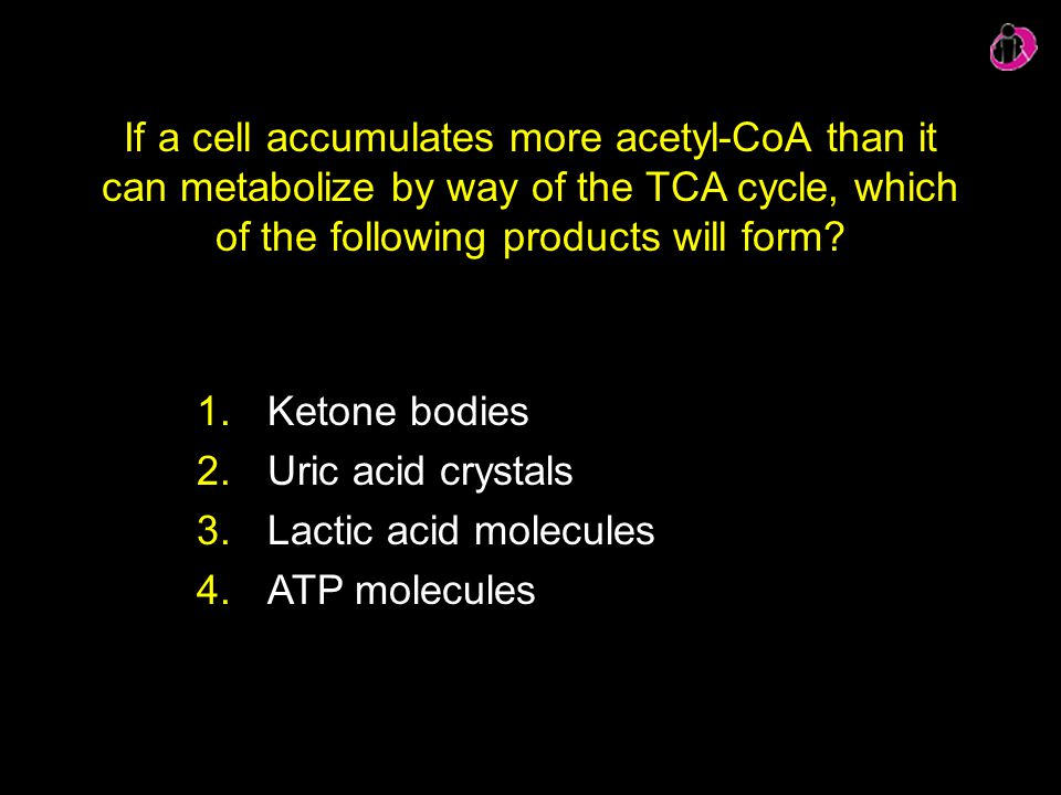 If a cell accumulates more acetyl-CoA than it can metabolize by way of the TCA cycle, which of the following products will form