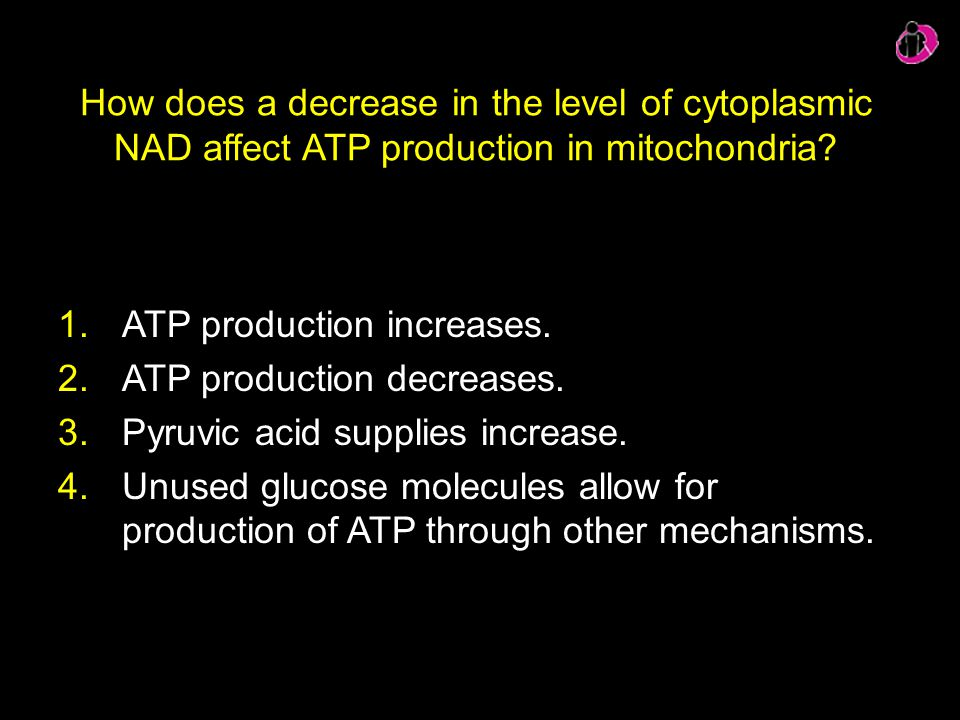 ATP production increases. ATP production decreases.