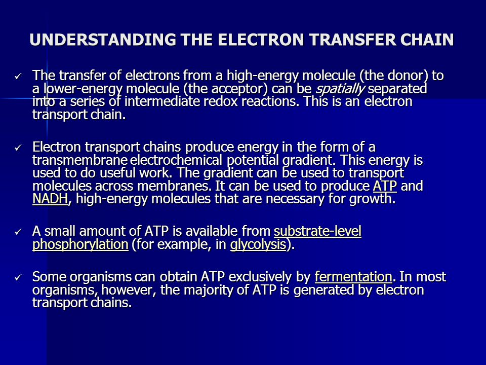 UNDERSTANDING THE ELECTRON TRANSFER CHAIN