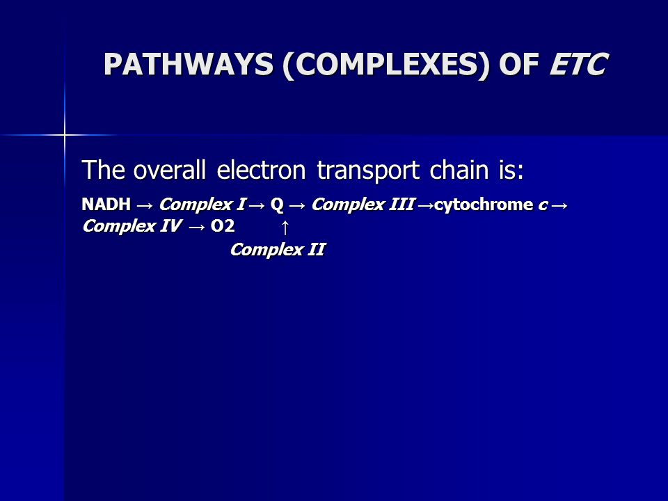 PATHWAYS (COMPLEXES) OF ETC