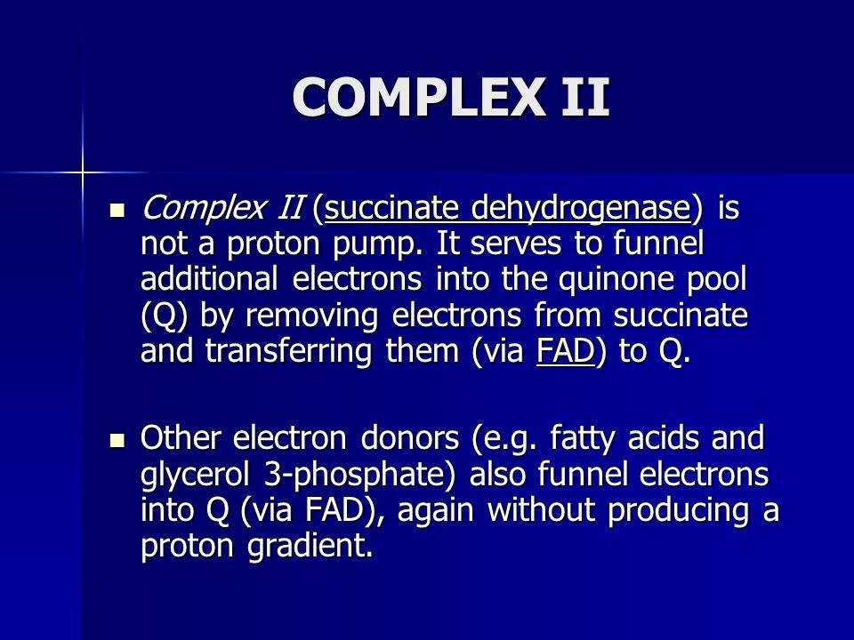 COMPLEX II