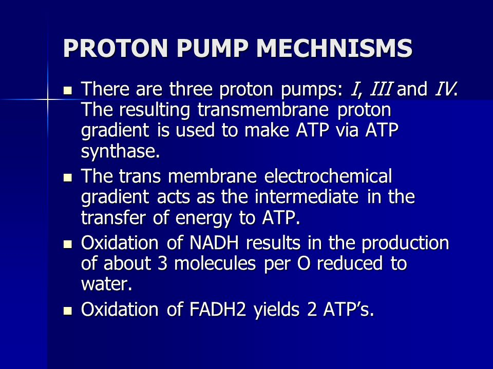 PROTON PUMP MECHNISMS There are three proton pumps: I, III and IV. The resulting transmembrane proton gradient is used to make ATP via ATP synthase.