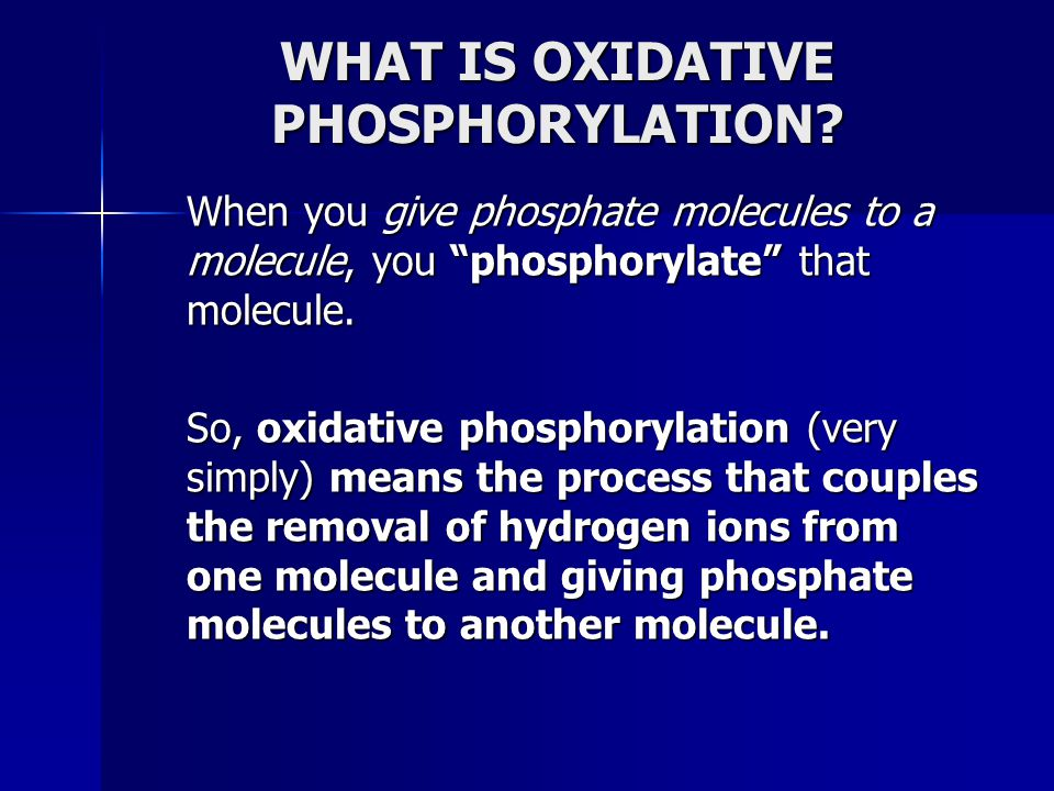 WHAT IS OXIDATIVE PHOSPHORYLATION
