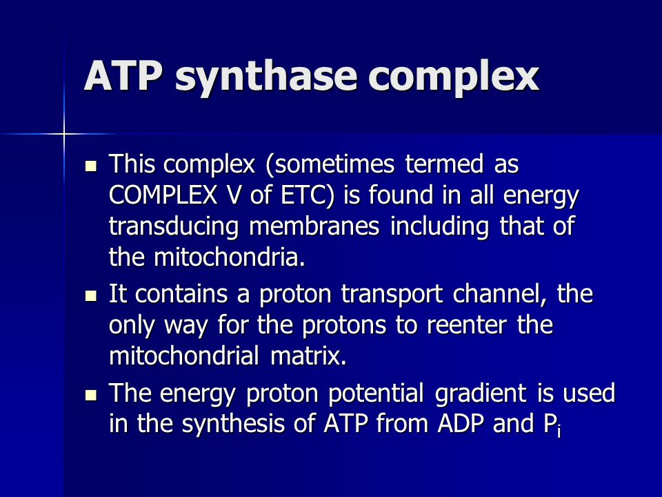 ATP synthase complex