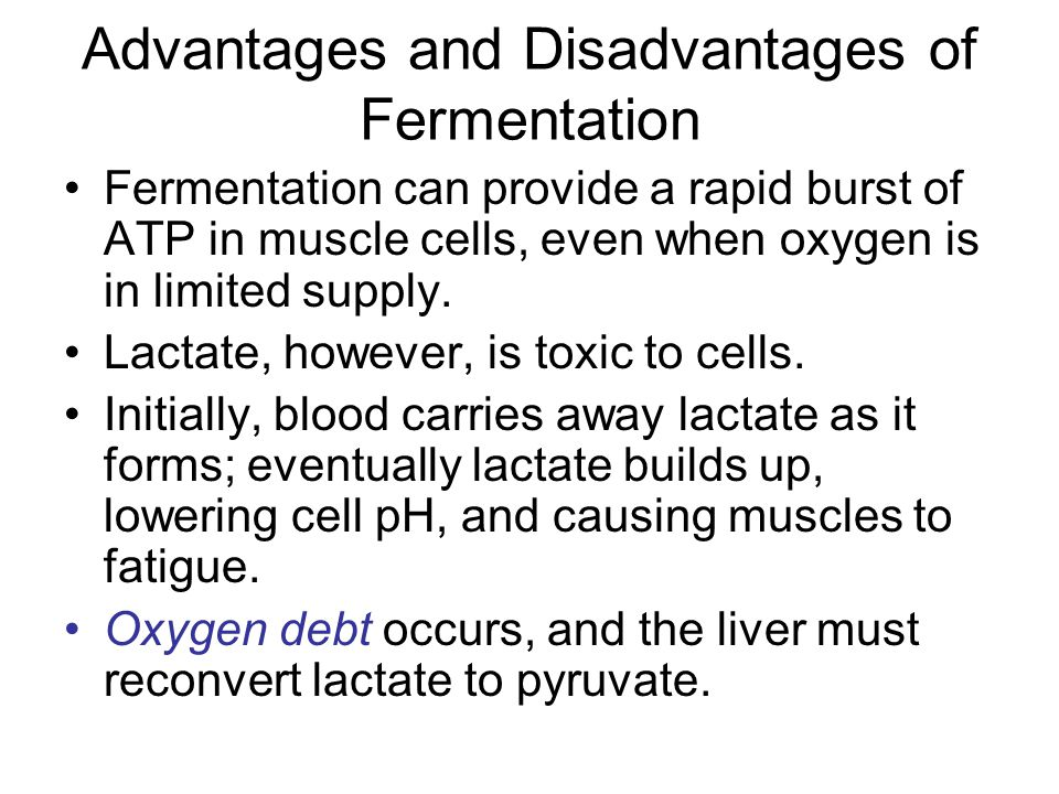 Advantages and Disadvantages of Fermentation