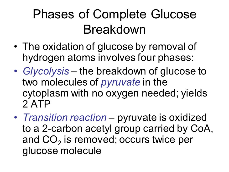 Phases of Complete Glucose Breakdown