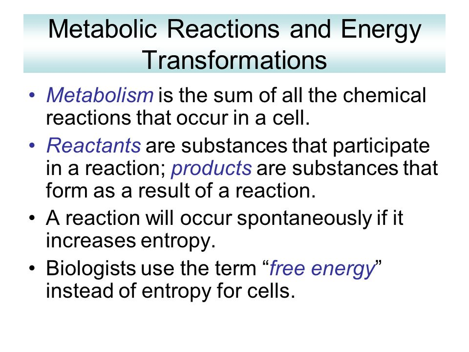 Metabolic Reactions and Energy Transformations