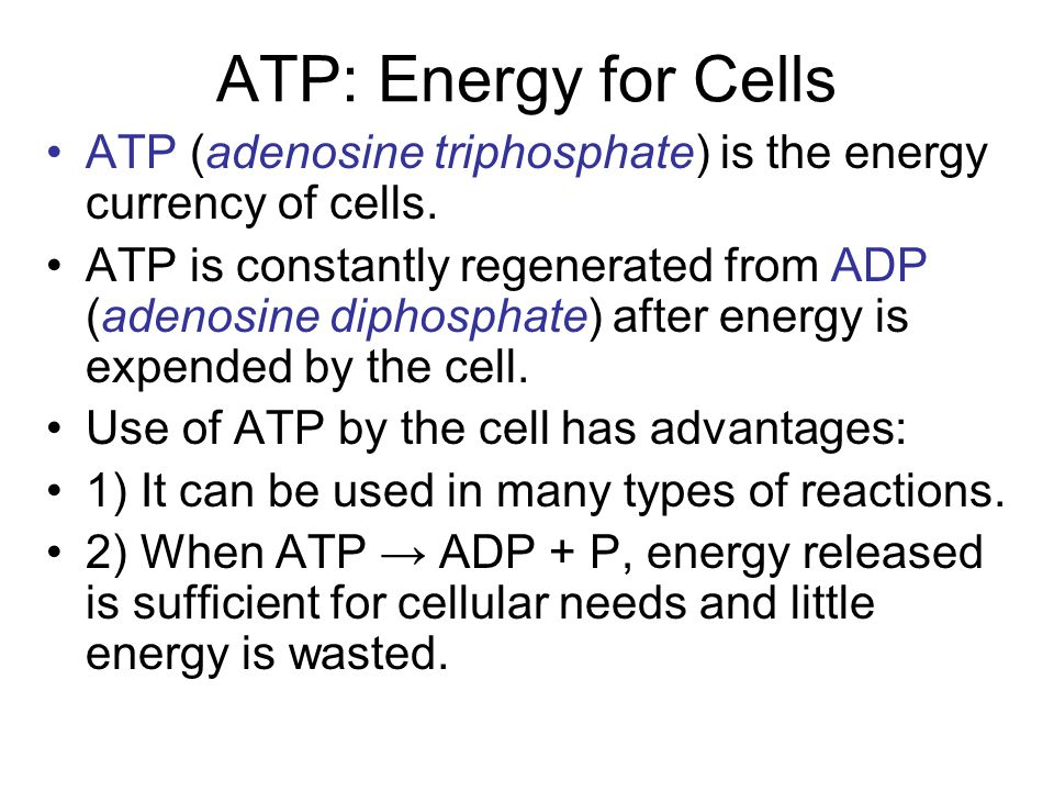ATP: Energy for Cells ATP (adenosine triphosphate) is the energy currency of cells.