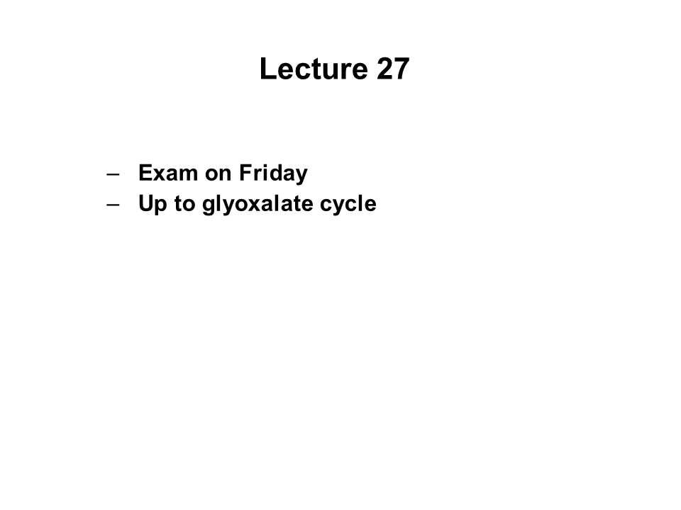 Lecture 27 Exam on Friday Up to glyoxalate cycle