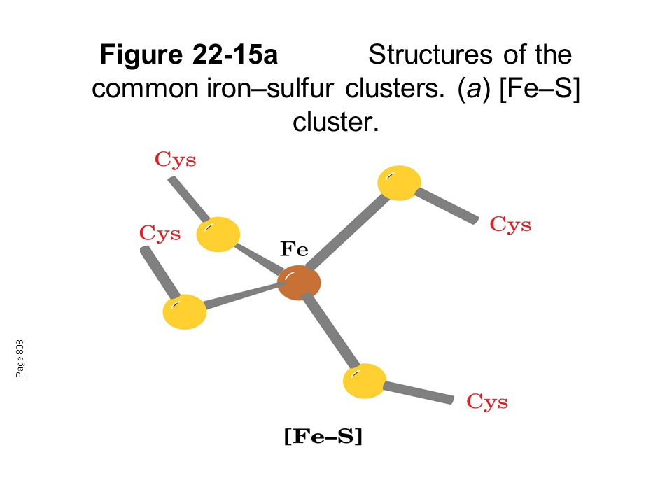 Figure 22-15a. Structures of the common iron–sulfur clusters