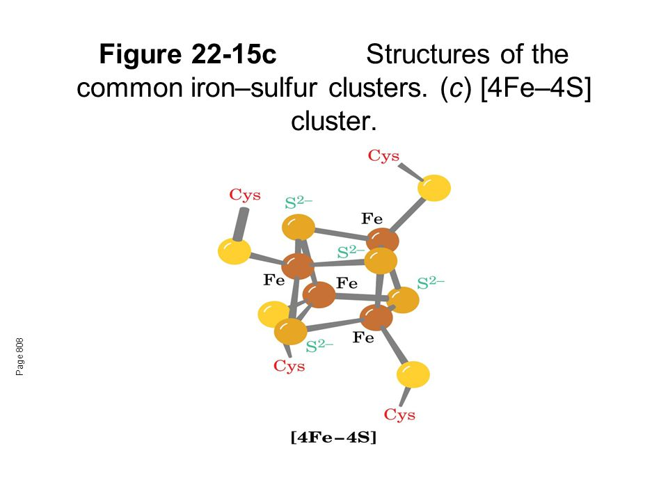 Figure 22-15c. Structures of the common iron–sulfur clusters